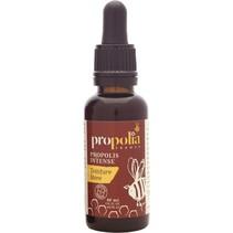 Moedertinctuur van propolis