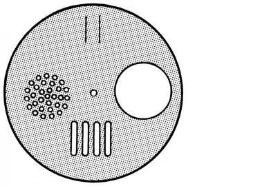 inox ronde schijf klein - 4 opties - per stuk + vijs-1