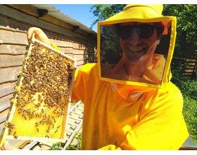 Adoptez des abeilles