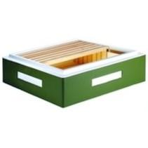 Frankenbeute corps de miel Dadant pour 11 ramen