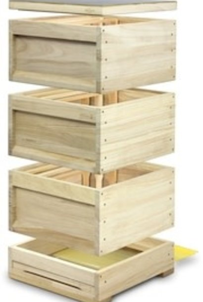 Wooden DN 10 hive - 3 brood chambers with frames