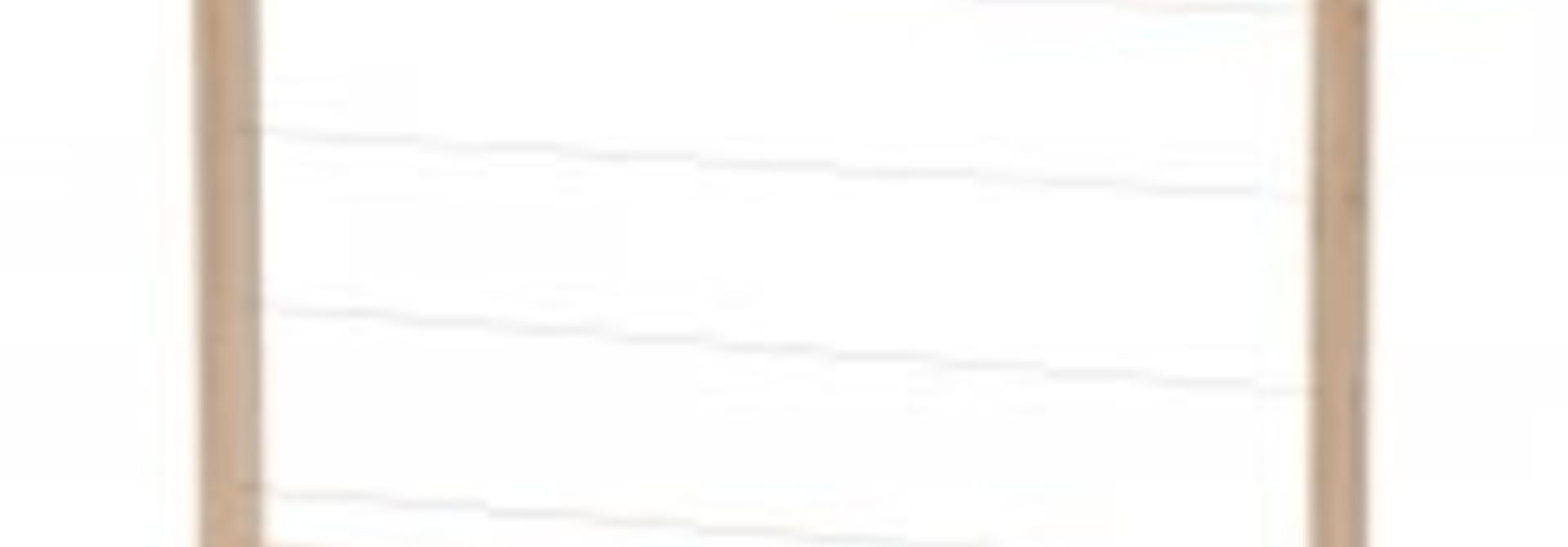Simplex NL - broedramen per 10