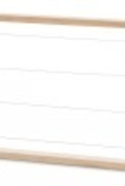 Simplex NL - brood frames - 10 frames