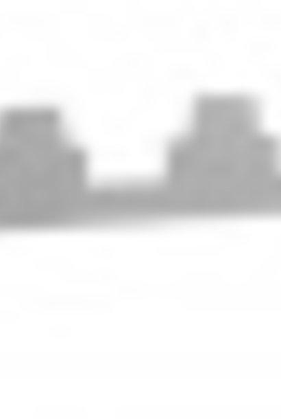 Simplex segeberger afstandshouder inox