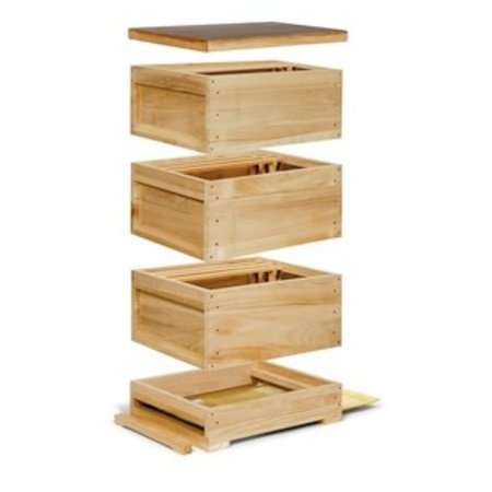 Complete wooden Zander hive - 3 chambers with frames