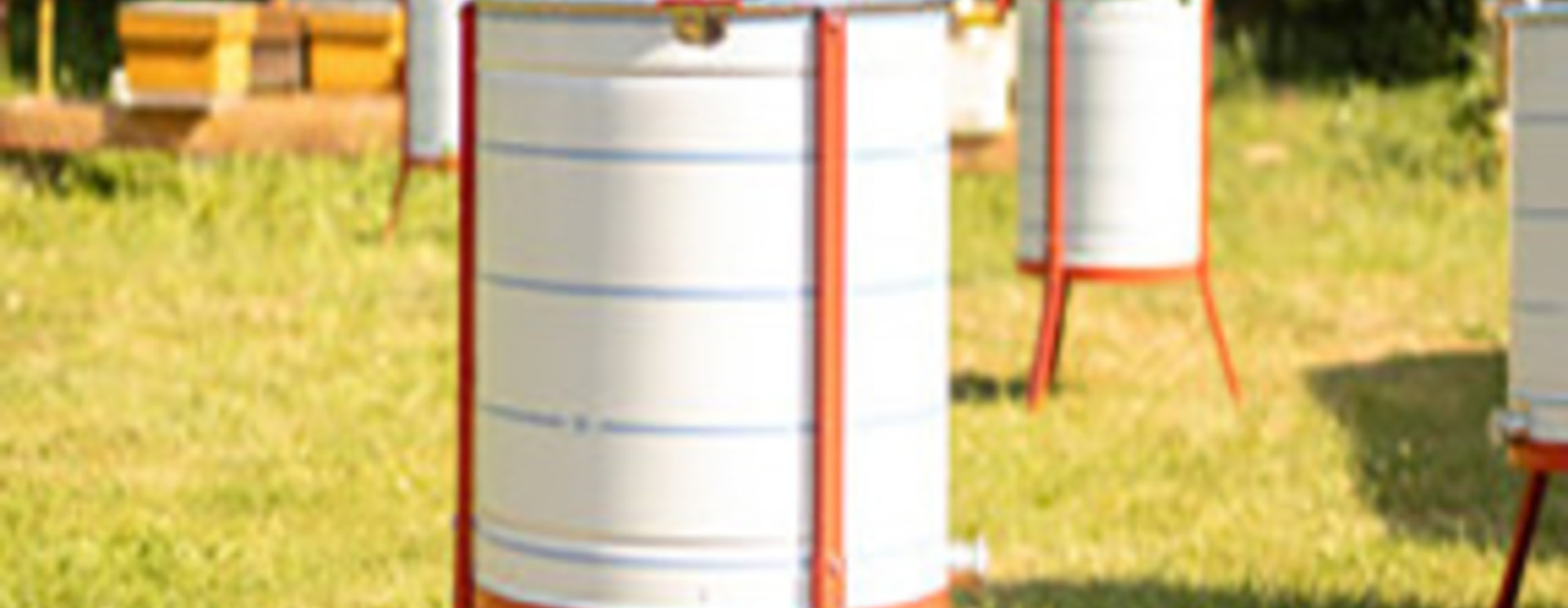 Apini - maturateurs et extracteurs du miel