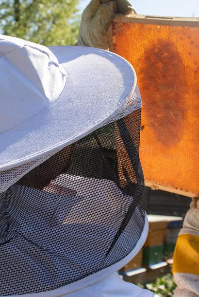 Marraine et parrainage: paquet 'worker bee'