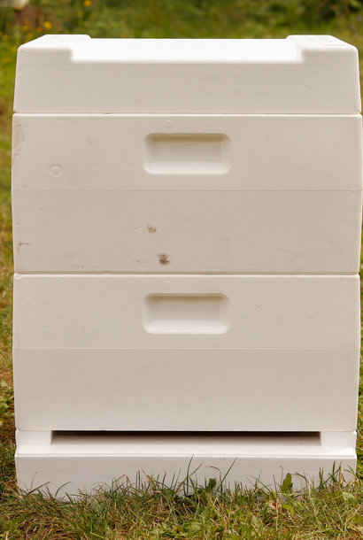 Segeberger ruche - plateau plat