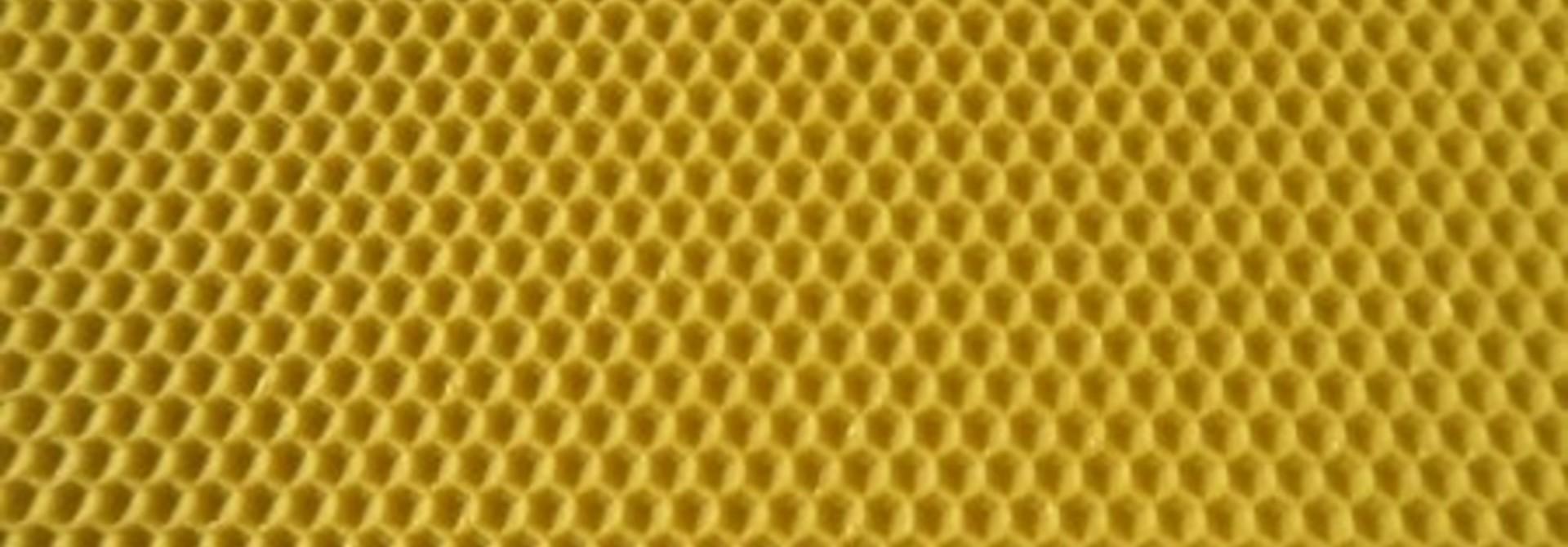 Gecertificeerde bijenwas waswafels - Simplex broedkamer