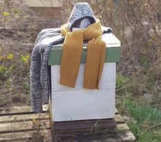 Mag je de bijenkast 's winters openmaken?