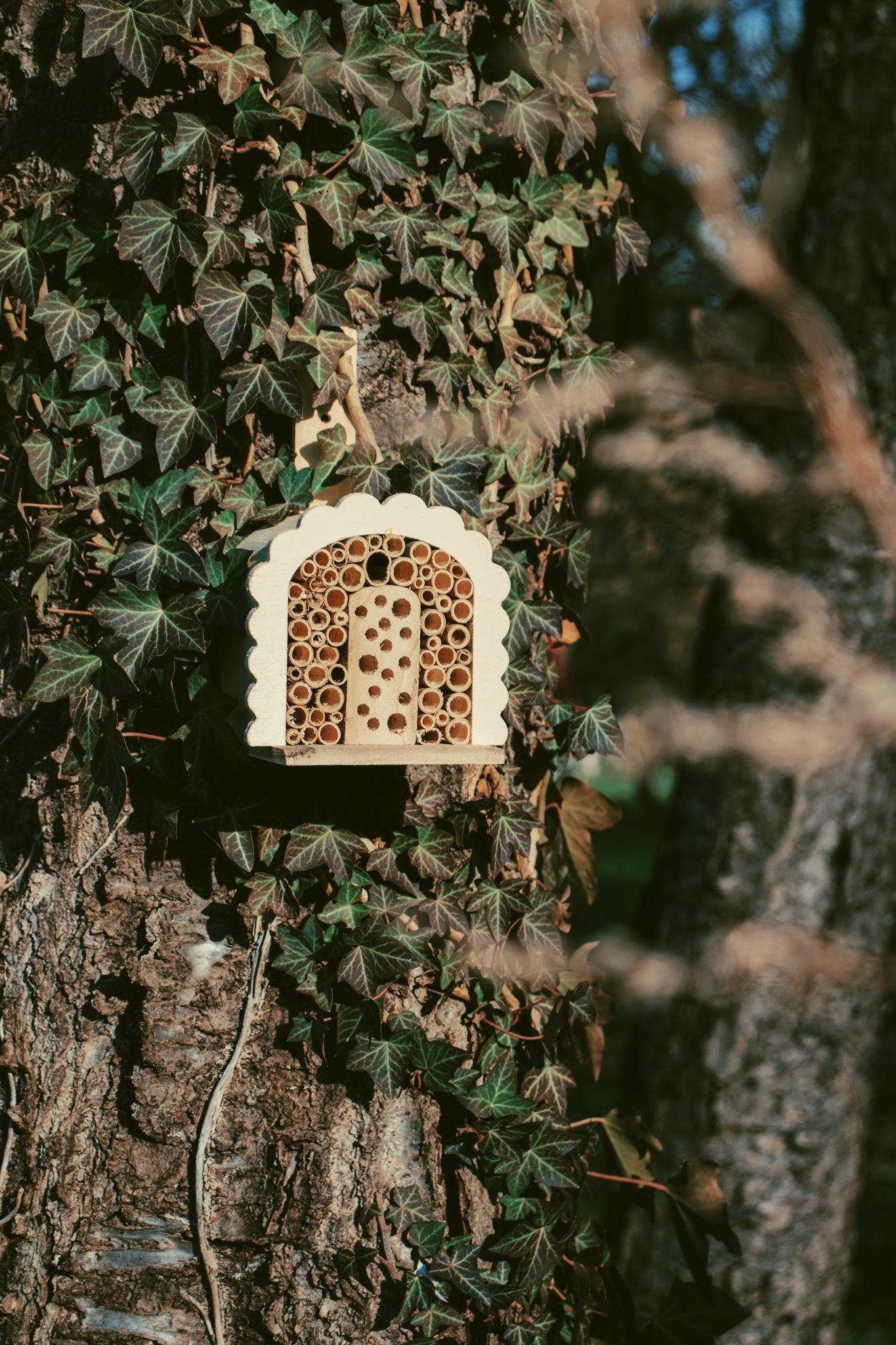 Insectenhotel voor wilde bijen klein-2