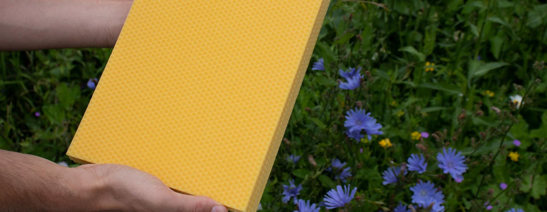 Cire d'abeilles