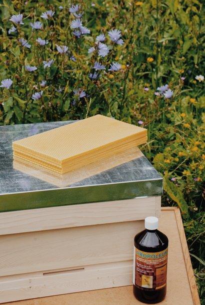 Starters package: Beehive + beekeeper set