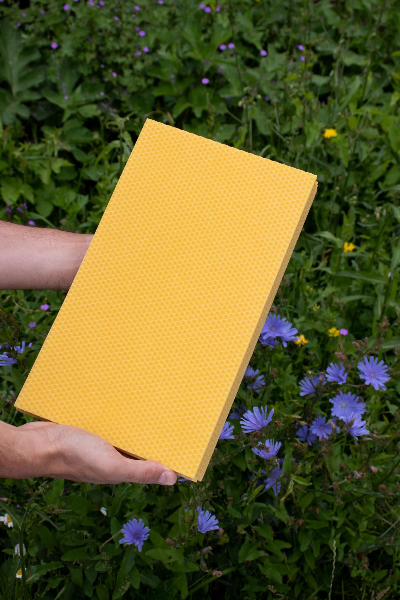 Starterspakket 'Mijn eerste bijenkast'-2