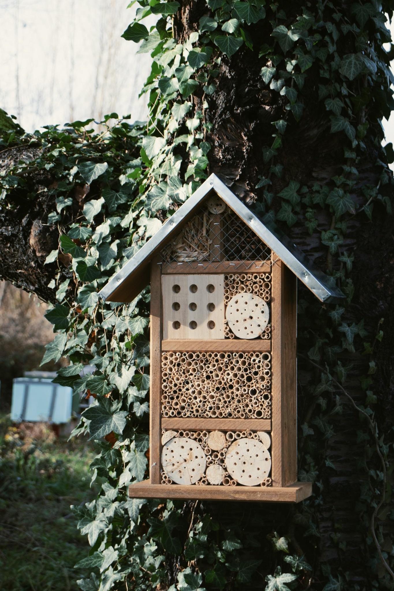 Insectenhotel voor wilde bijen en insecten-1