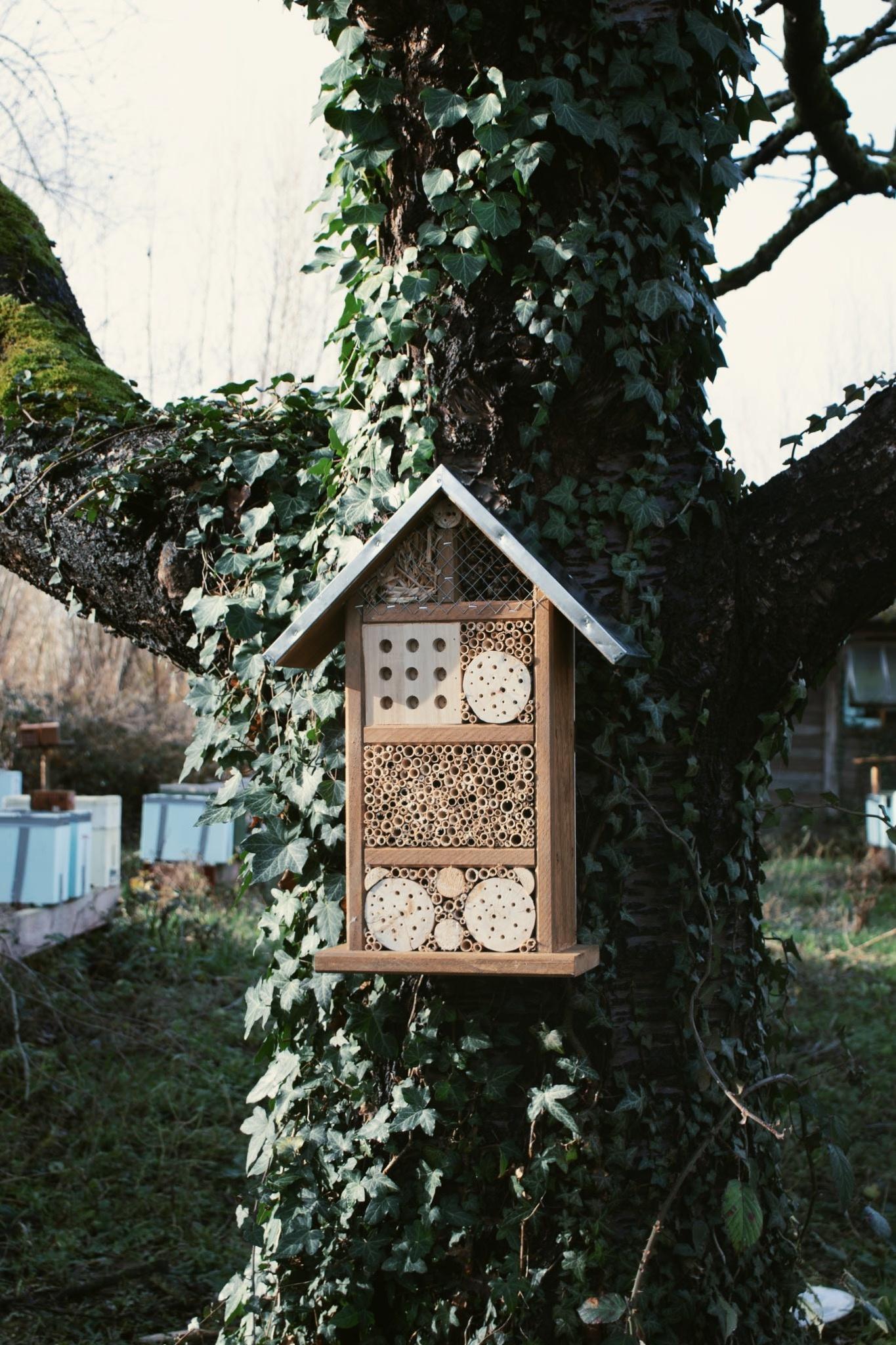 Insectenhotel voor wilde bijen en insecten-2