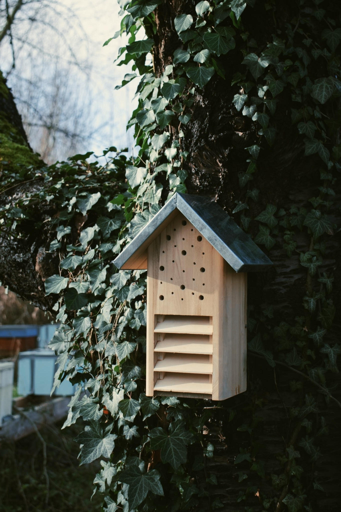 Insectenhotel - Vlinders en bijen-1