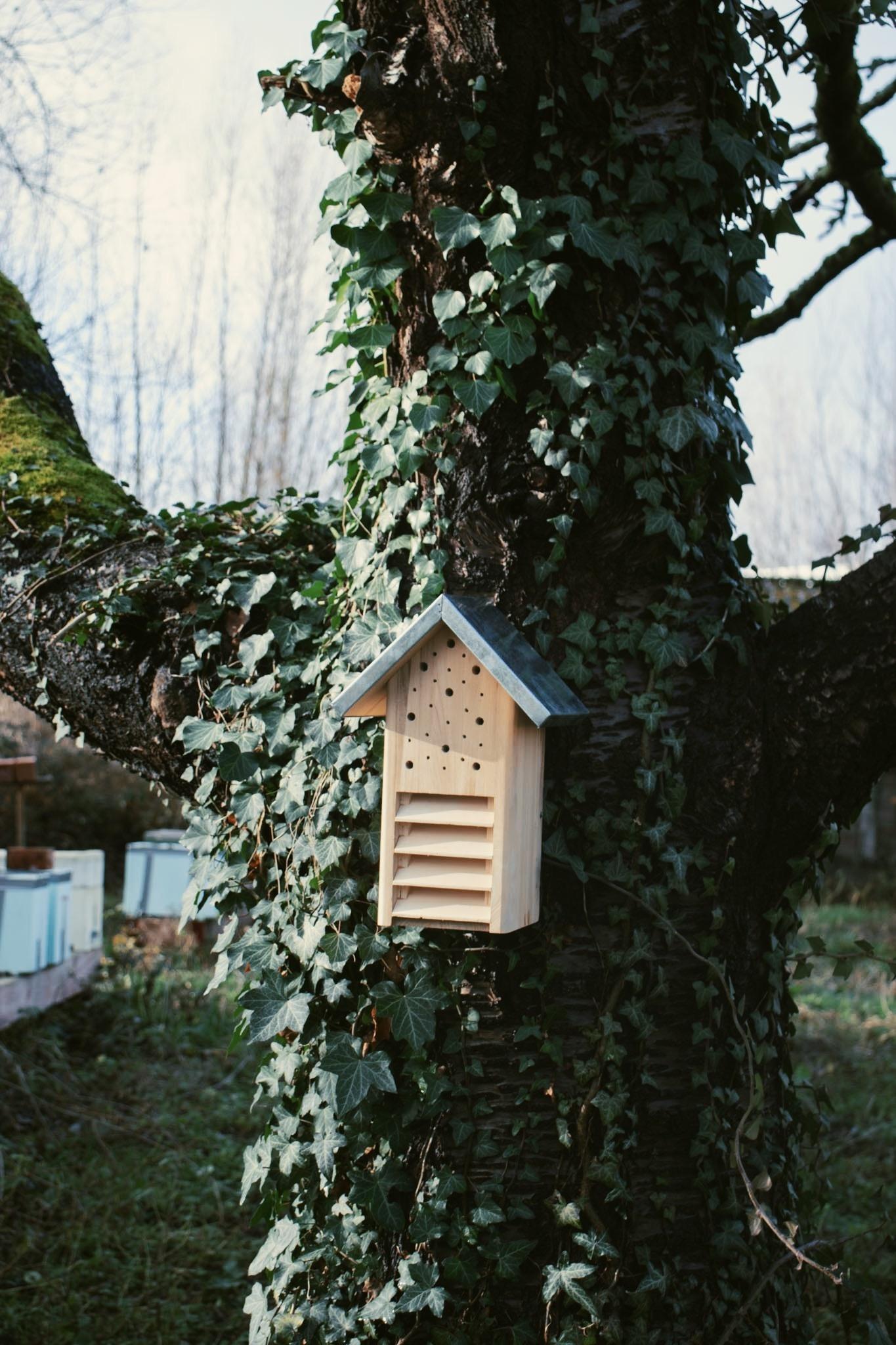 Insectenhotel - Vlinders en bijen-2