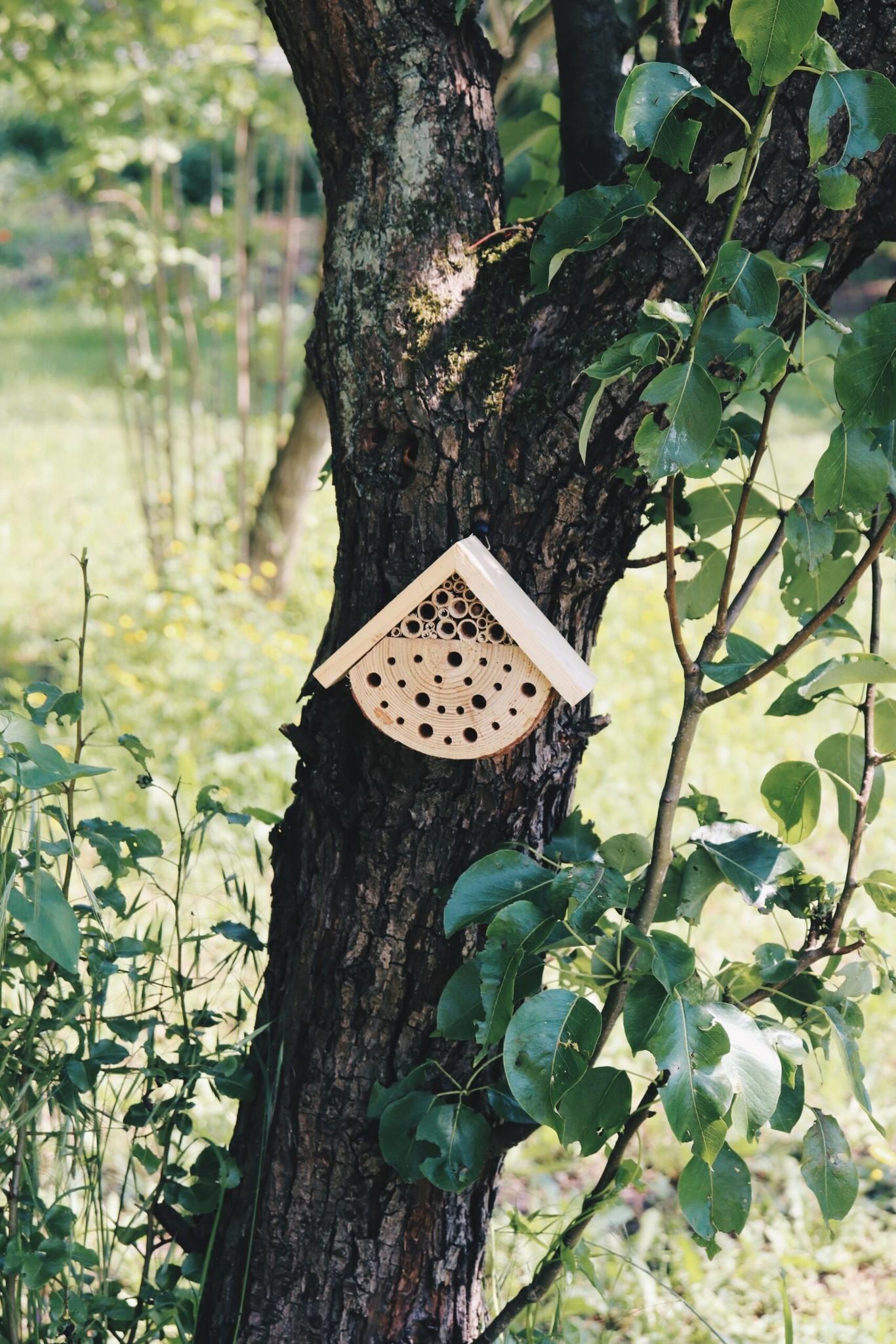 Mini Luxe Insectenhotel-1