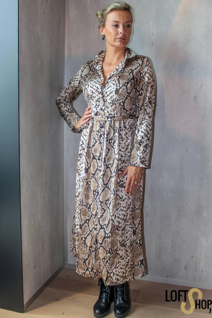 Millenium Dress Jill Brown