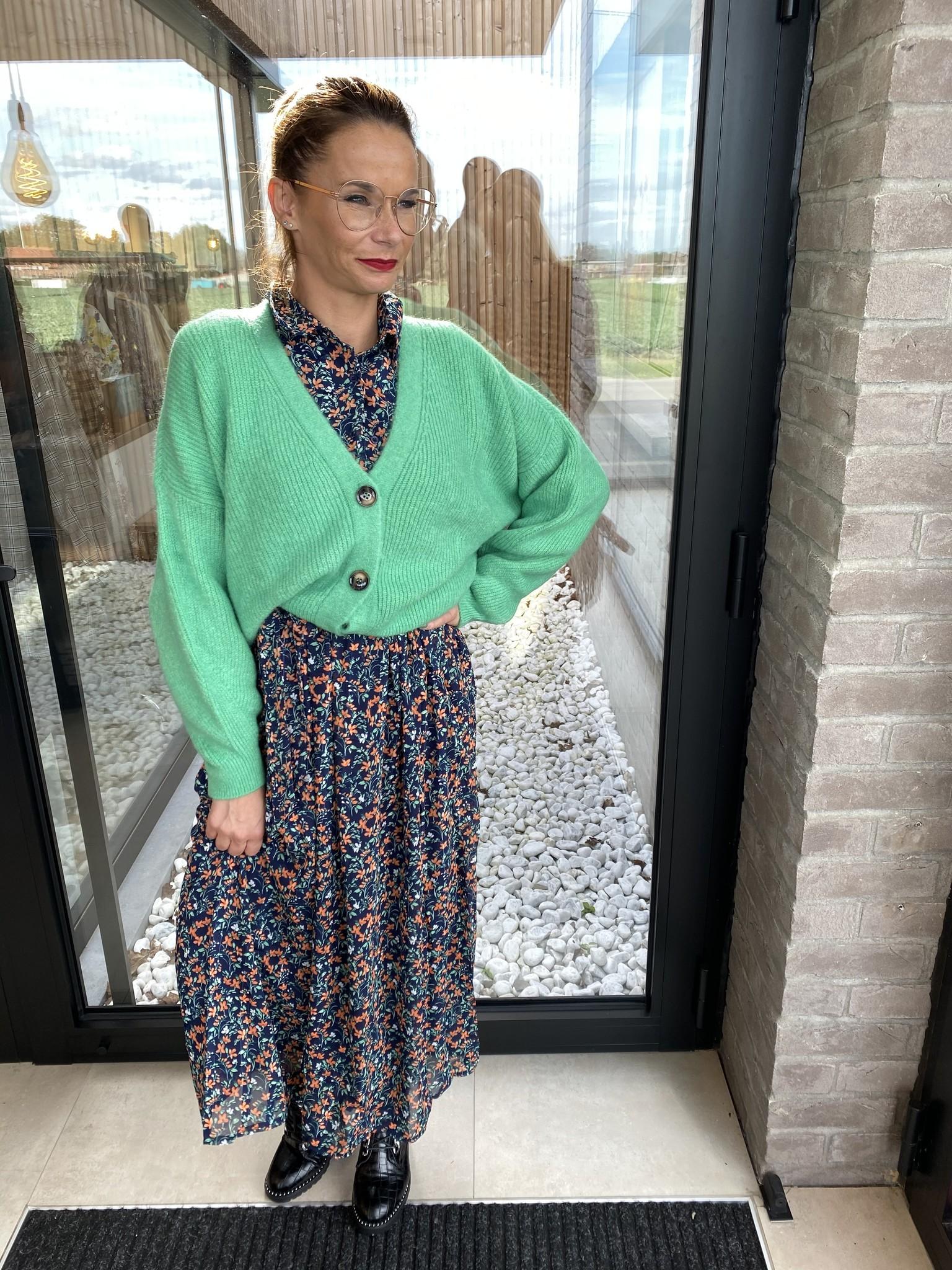 Dress Amandine Blauw-corail-groen