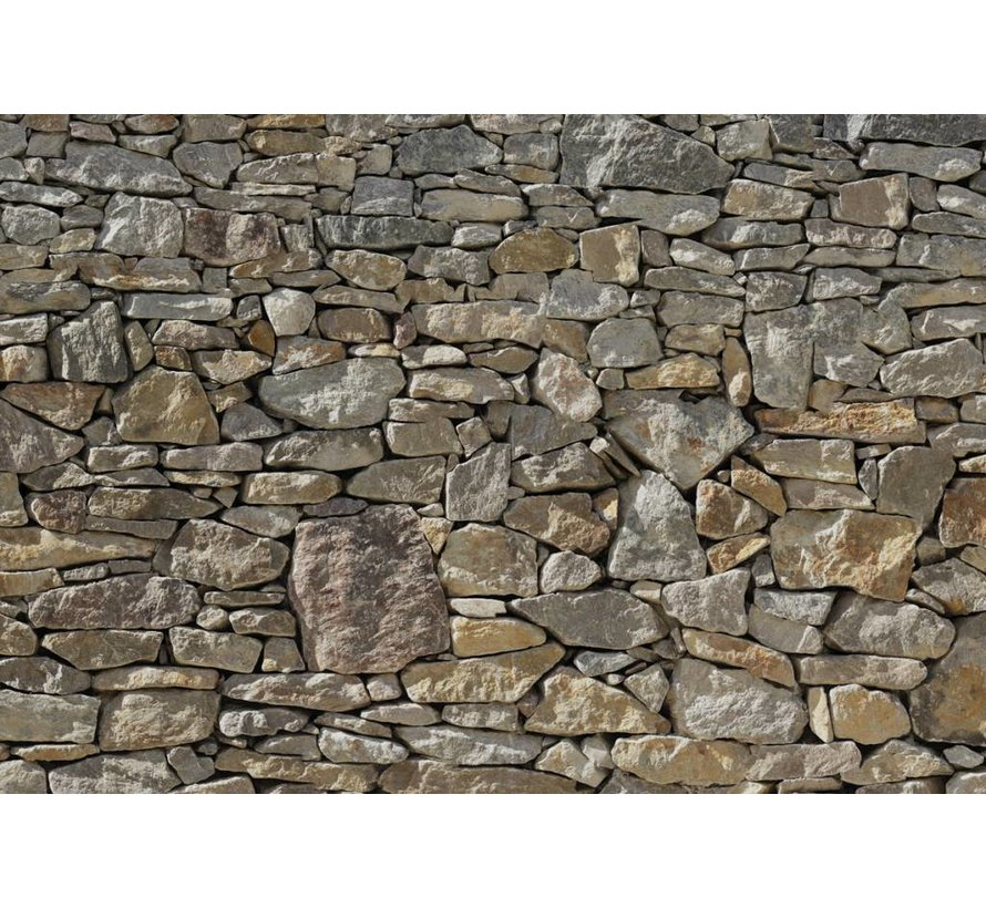 Stone Wall Fotobehang 368x254cm 8-delig