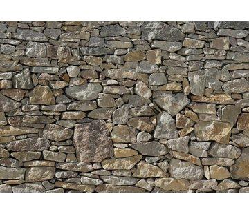 Komar Stone Wall Vlies Fotobehang 368x248cm