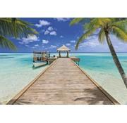 Komar Beach Resort Fotobehang 368x254cm