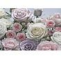 Floraison Fotobehang 368x254cm 8-delig