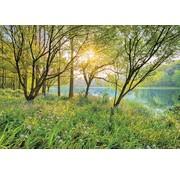 Komar Spring Lake Fotobehang National Geographic 368x254cm