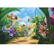 Komar Fairies Meadow Fotobehang 368x254cm