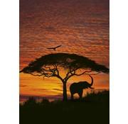 Komar African Sunset Fotobehang National Geographic 194x270cm
