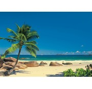 Komar Seychellen Fotobehang 270x194cm