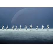 Komar Star Wars Scarif Beach Fotobehang 368x254cm