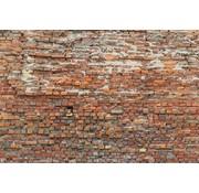 Komar Bricklane Vlies Fotobehang 368x248cm