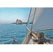 Komar Sailing Fotobehang National Geographic 368x254cm