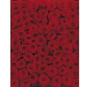 Komar Roses Fotobehang 194x270cm