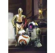 Komar Star Wars Three Droids Fotobehang 184x254cm