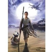 Komar Star Wars Rey Fotobehang 184x254cm