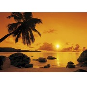 Komar Sunset Fotobehang 368x254cm