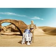 Komar Star Wars Lost Droids Fotobehang 368x254cm