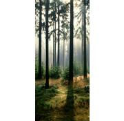 Papermoon Bos Vlies Fotobehang 90x200cm