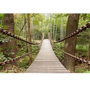 Papermoon Hangbrug Vlies Fotobehang 250x180cm