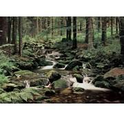 Papermoon Natuur Vlies Fotobehang 350x260cm