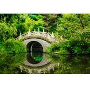 Papermoon Japanse Tuin Vlies Fotobehang 350x260cm