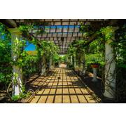 Papermoon Looppad in Tuin Vlies Fotobehang 350x260cm