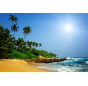 Papermoon Sri Lanka Tropisch Strand Vlies Fotobehang 350x260cm