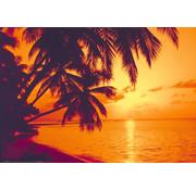 Papermoon Tropische Zonsondergang Vlies Fotobehang 350x260cm