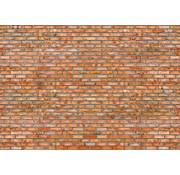 Papermoon Bakstenen Muur Vlies Fotobehang 350x260cm