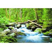 Papermoon Waterfall Deep Forrest Vlies Fotobehang 250x180cm